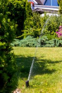zraszacz podczas pracy, nawadnianie ogrodu